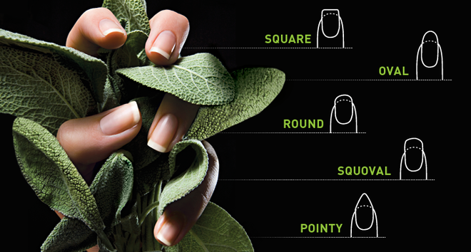 Pin It Whats Your Best Nail Shape