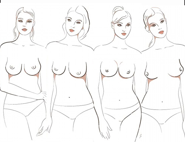 Knowing the Shape of Your Breast