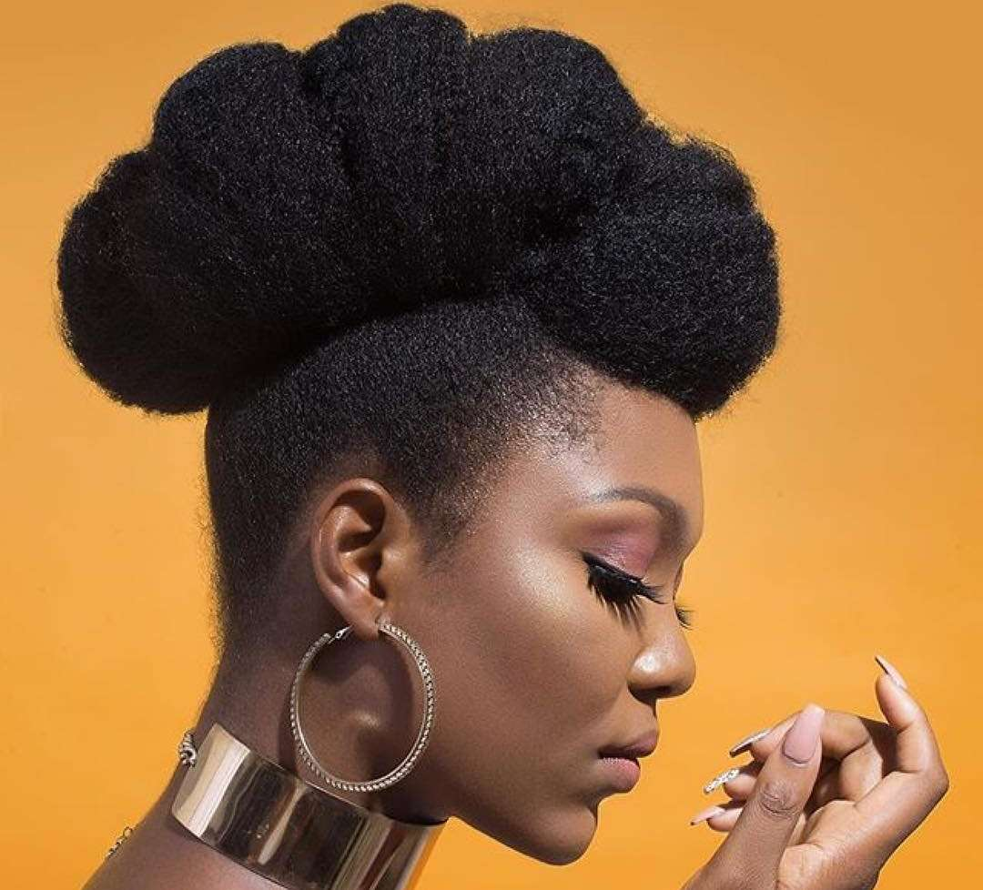 Naturalista 7 Natural Hairstyles You Should Try Out Kamdora